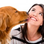 Pet Sitter : How To Find The Most Reliable and Trusting Pet Sitter Service